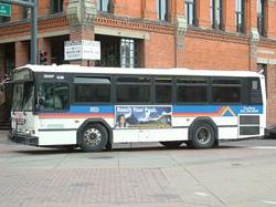 bus51