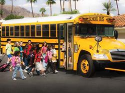 bus141