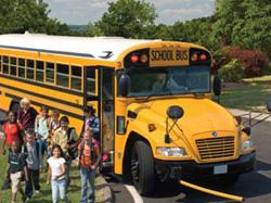 bus15